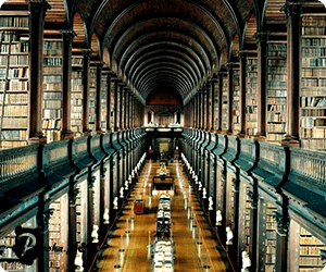 largest-libraries