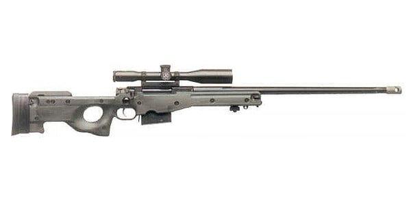 Accuracy International Arctic Warfare Magnum