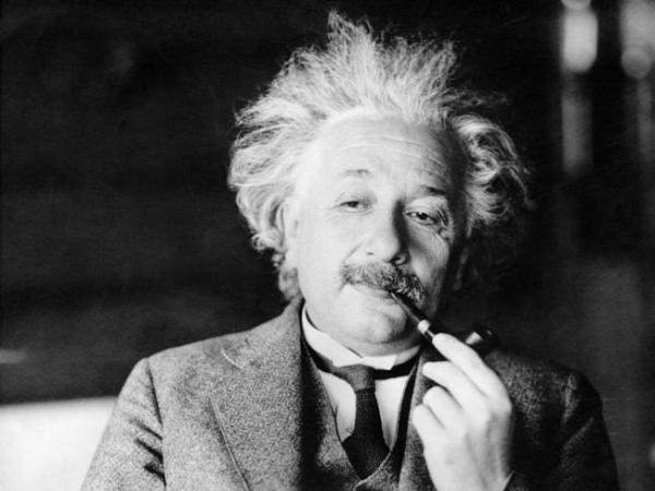 Уровень интеллекта зависит от размера мозга